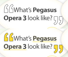 What does Pegasus Opera 3 Accounts Software look like?