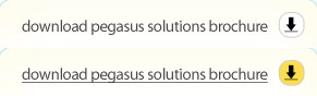 Download Pegasus Solutions Brochure