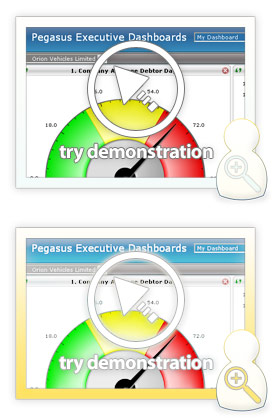 Accounting Software Demos: Executive Dashboards